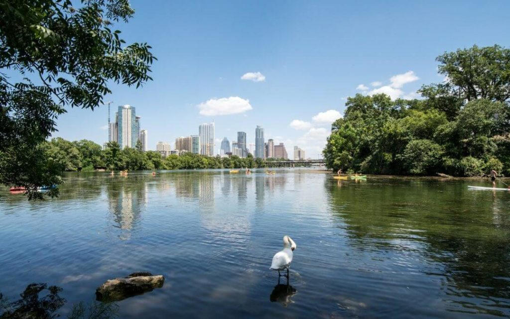 Austin-Student-Living-lake-austin-skyline